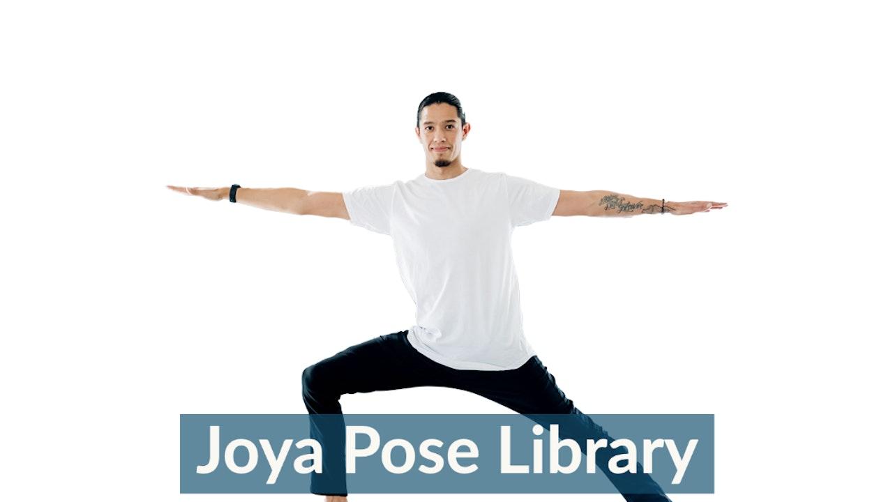 Joya Pose Library