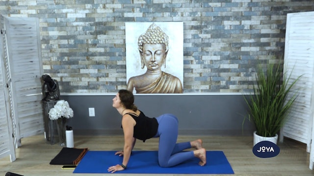 Vinyasa Flow with Madison - Core Focus