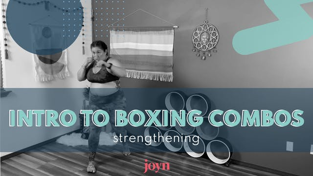 Intro to Boxing Combos