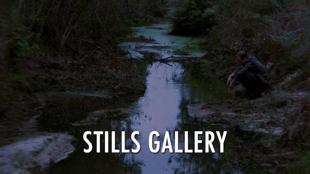 Extra - Stills Gallery
