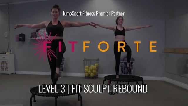 Level 3 | Fit Sculpt Rebound | FitForte with Sofia