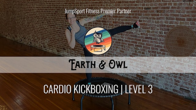 Level 3 | Cardio Kickboxing | Earth & Owl with Nikki