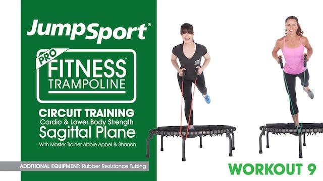 9 Circuit Training - Cardio & Lower Body Strength - Sagittal Plane
