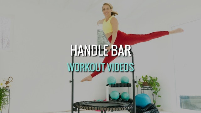Handle Bar Workouts