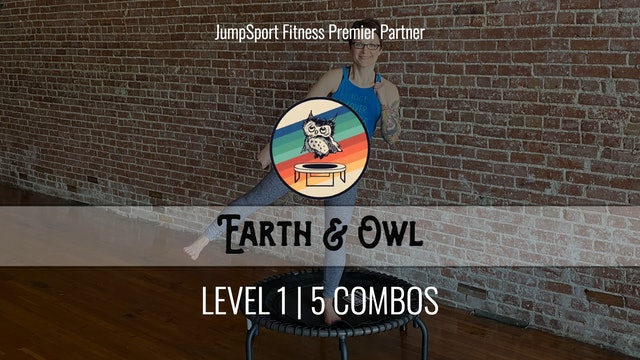 Level 1 | 5 Combos | Earth & Owl | Handle Bar