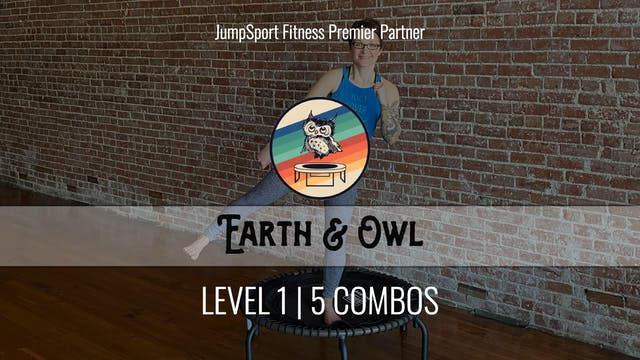 Level 1 | 5 Combos | Earth & Owl | Ha...