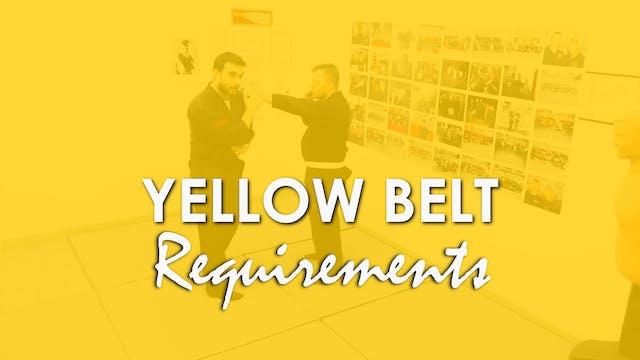 YELLOW BELT REQUIREMENTS
