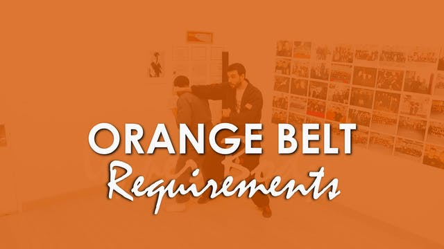 ORANGE BELT REQUIREMENTS