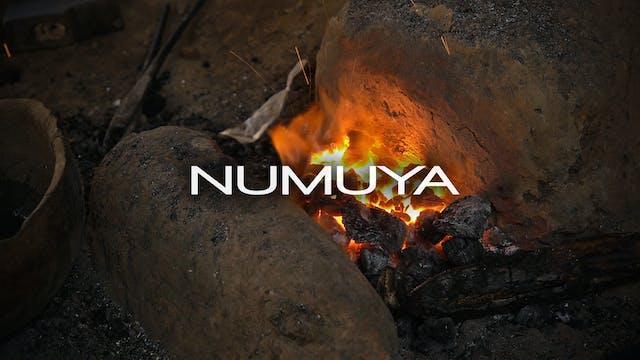 Numuya