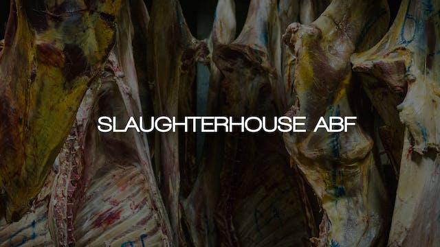 Slaughterhouse ABF
