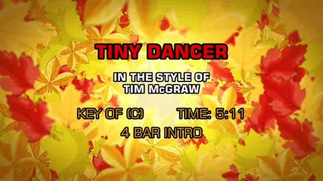 Tim McGraw - Tiny Dancer