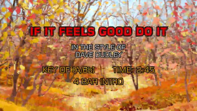 Dave Dudley - If It Feels Good Do It