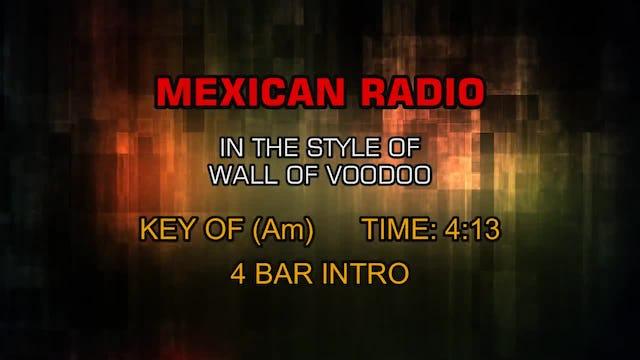 Wall Of Voodoo - Mexican Radio