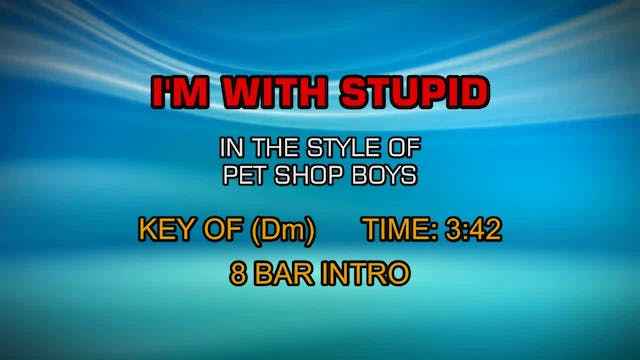 Pet Shop Boys - I'm With Stupid