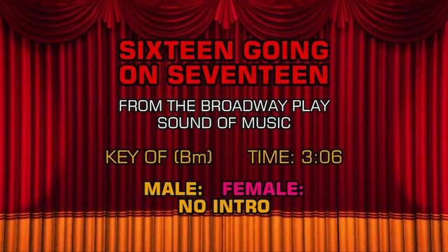 Sound of Music - Sixteen Going on Seventeen