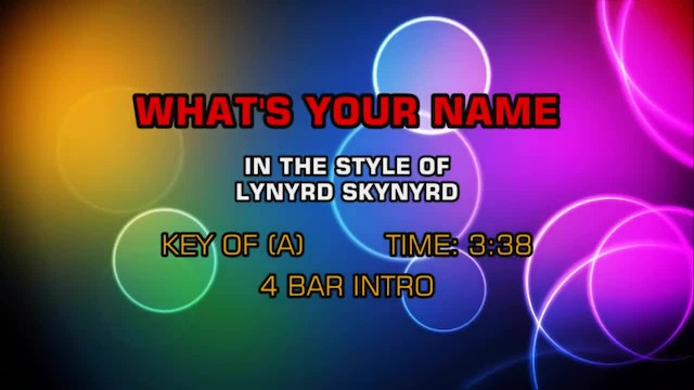 Lynyrd Skynyrd - What's Your Name