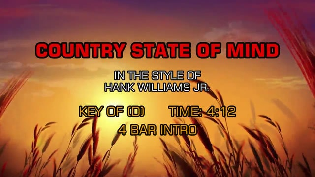 Hank Williams Jr. - Country State Of Mind