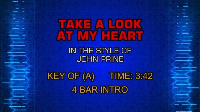 John Prine - Take A Look At My Heart
