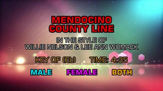 Willie Nelson & Lee Ann Womack - Mend...