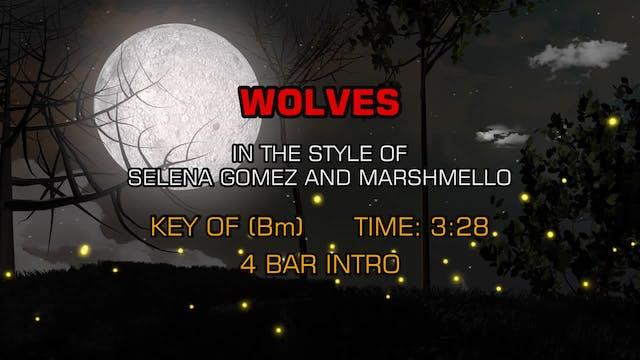 Selena Gomez and Marshmello - Wolves