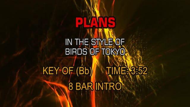 Birds Of Tokyo - Plans