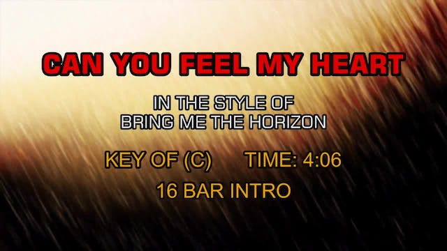 Bring Me The Horizon - Can You Feel M...