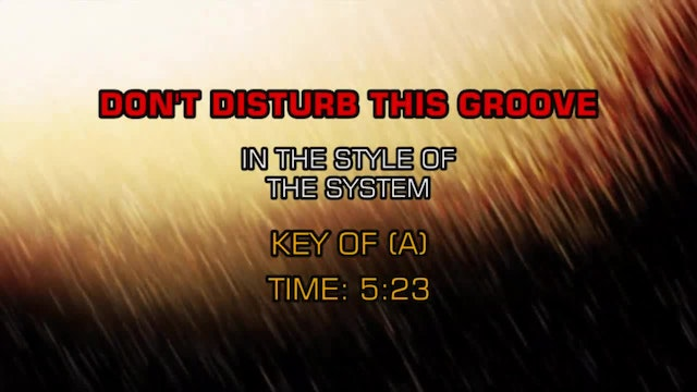System, The - Don't Disturb This Groove