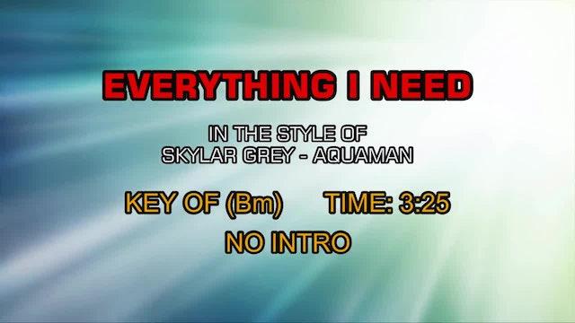 The Movie Aquaman - Everything I Need