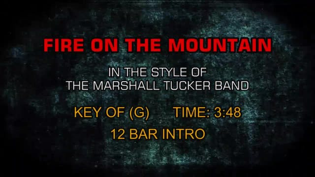 Marshall Tucker Band, The - Fire On T...