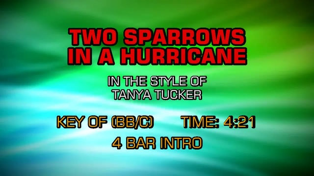 Tanya Tucker - Two Sparrows In A Hurricane