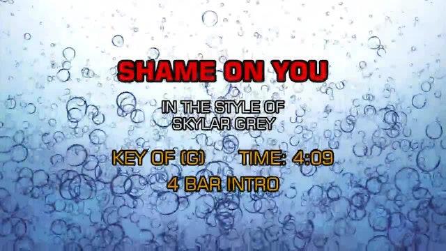 Skylar Grey - Shame On You