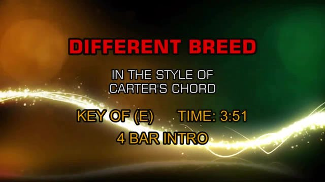 Carter's Chord - Different Breed