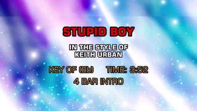 Keith Urban - Stupid Boy