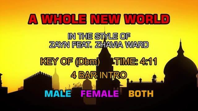 Zayn ft. Zhavia Ward - A Whole New World