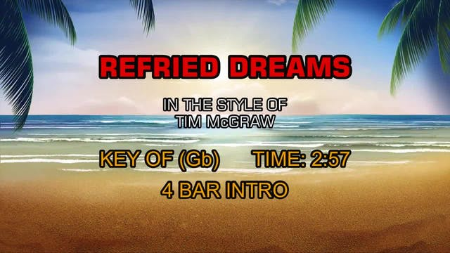 Tim McGraw - Refried Dreams