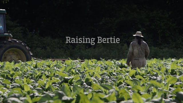 Raising Bertie Official Trailer