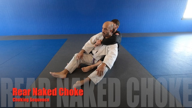 RearNakedChoke Grip 2of4