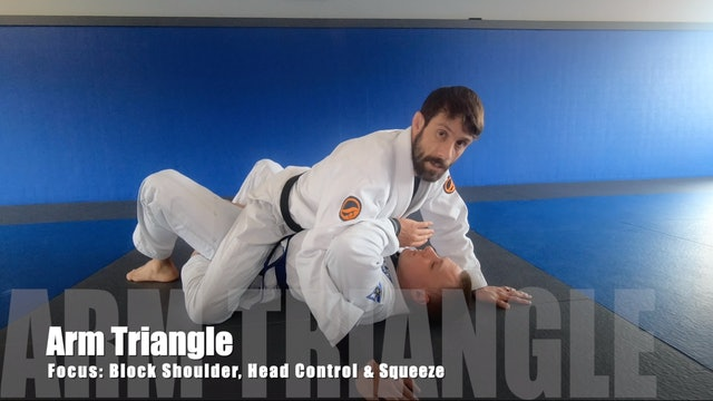 Mount Armlocks&Triangles 4of5