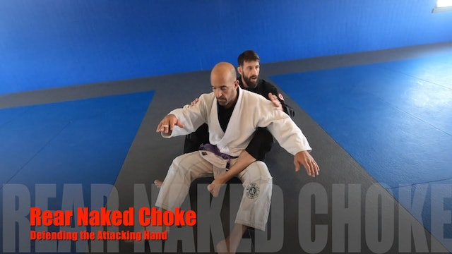 RearNakedChoke Seatbelt 1of4