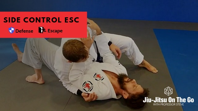 Bottom Side Control Concepts