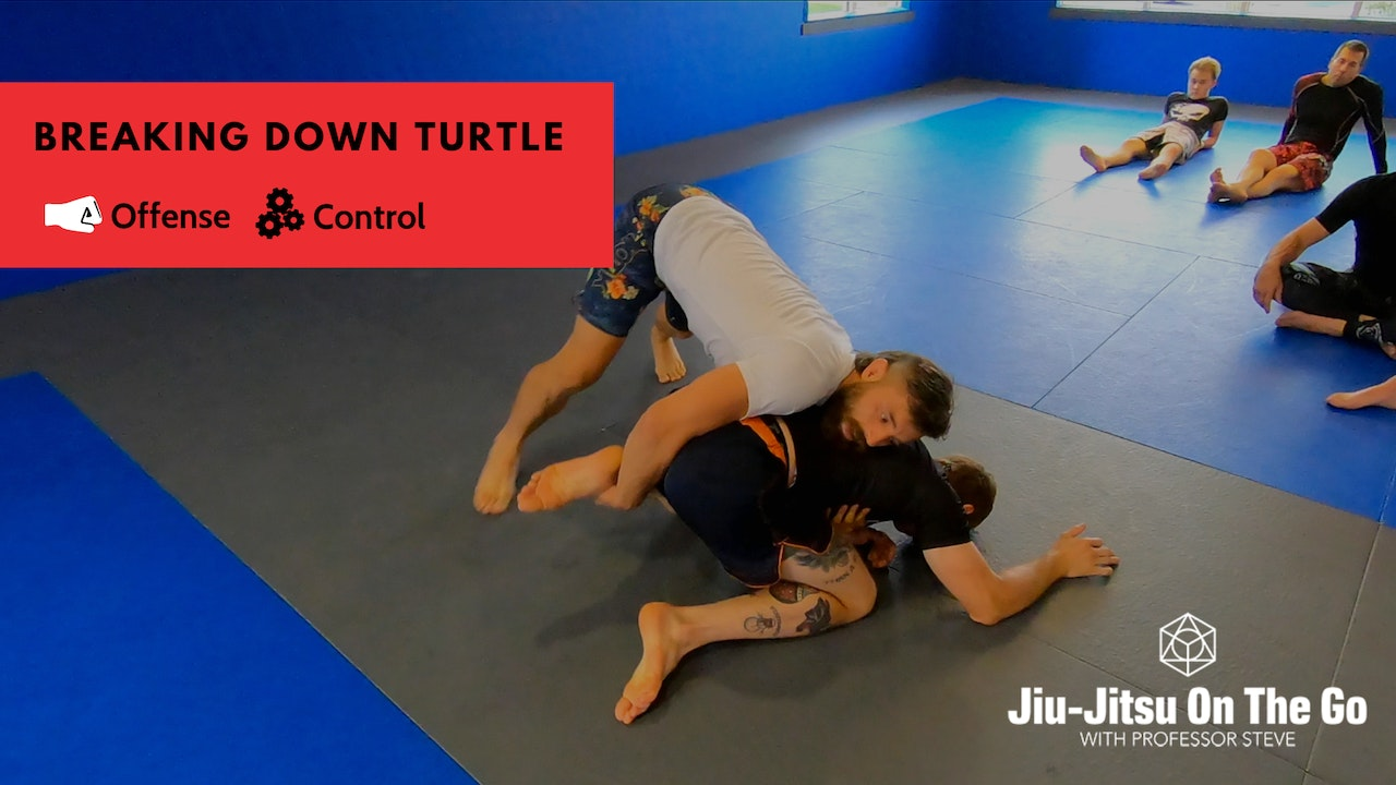 Breaking Down the Turtle Position