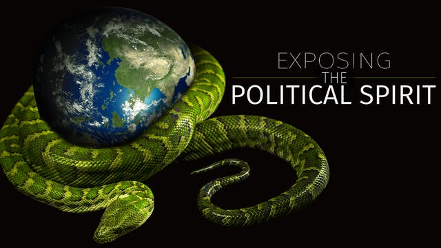 Political Spirit 7