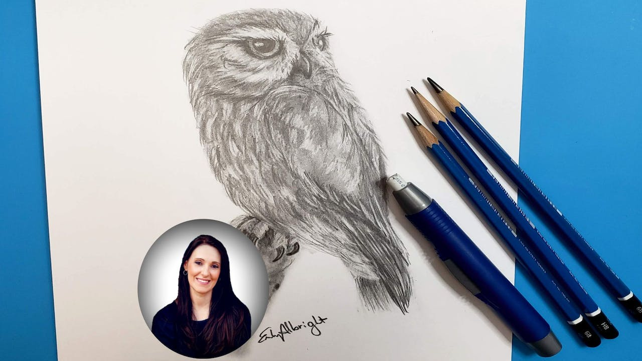 Learn How to DRAW Realistic Burrowing Owl