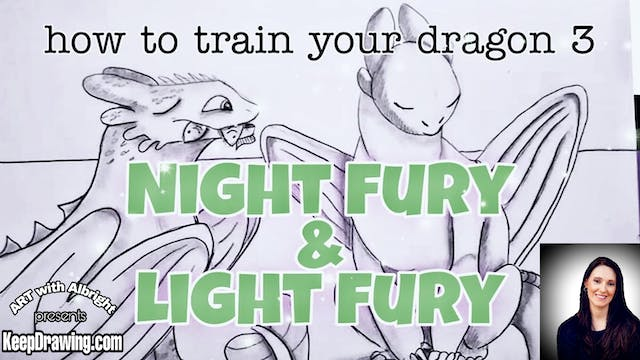 How to Train your Dragon ~ Night Fury & Light Fury