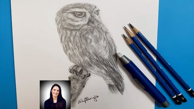 Learn How to draw a Realistic Burrowing Owl