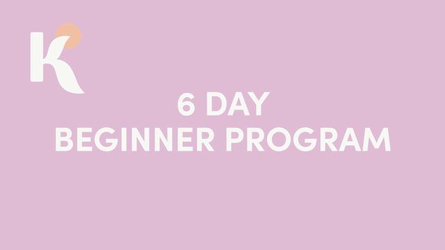 6 Day Beginner Program