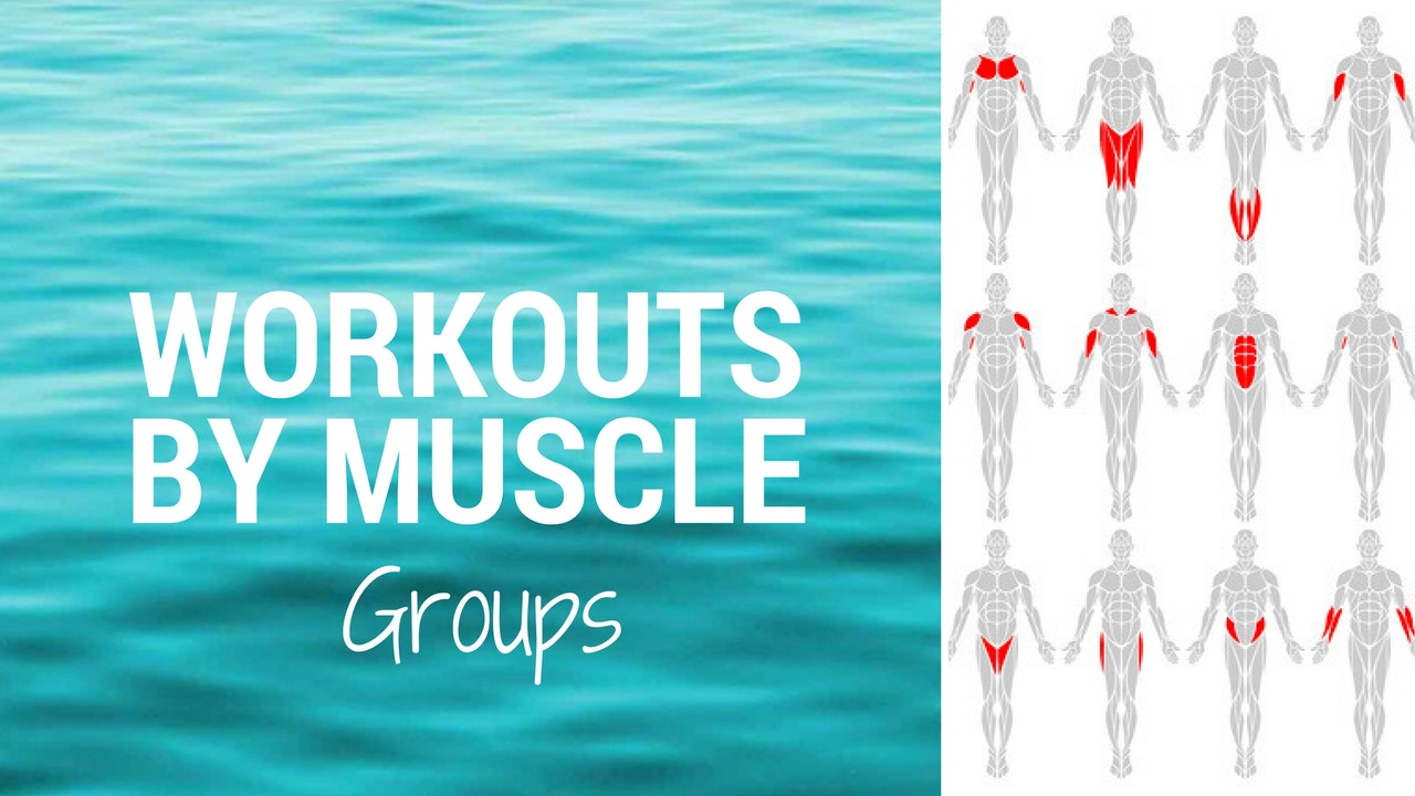 WORKOUTS BY MUSCLE GROUP