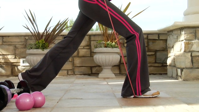 Exercise Lunge Tubing