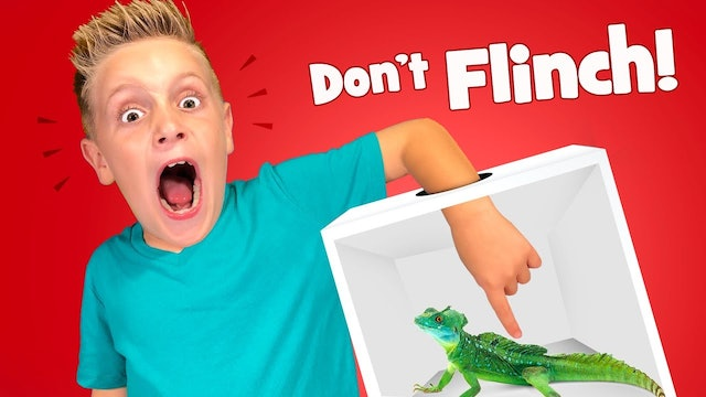 Don't Flinch Mystery Box Challenge!