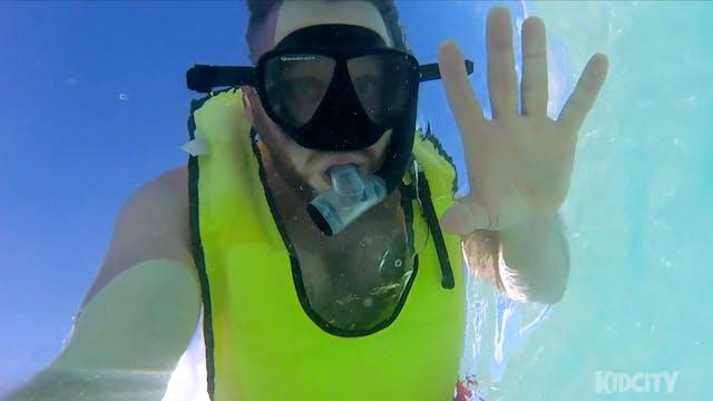Disney Cruise 2017 Part 2: Freezing a...
